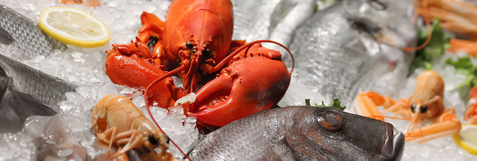 Seafood-Image